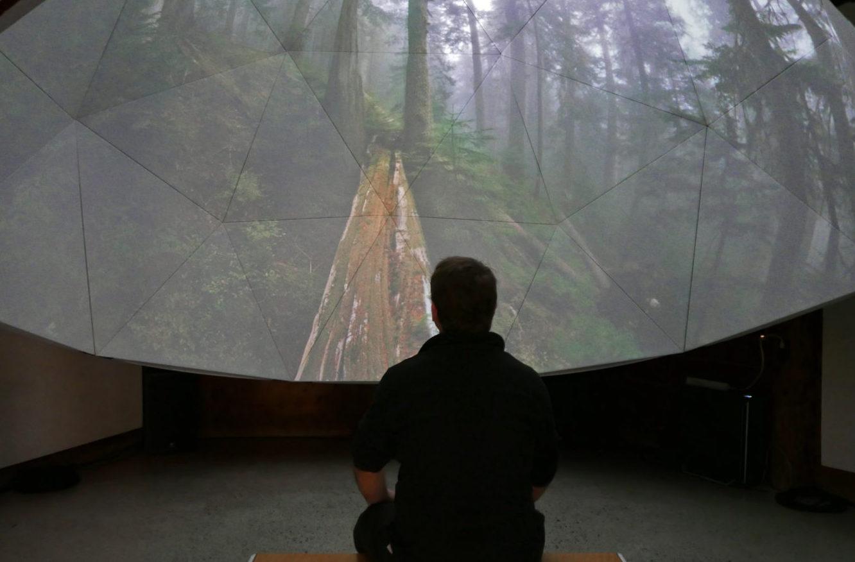 https://www.arts.ubc.ca/wp-content/uploads/sites/24/2021/08/enter-the-sanctuary-1800x885.jpeg